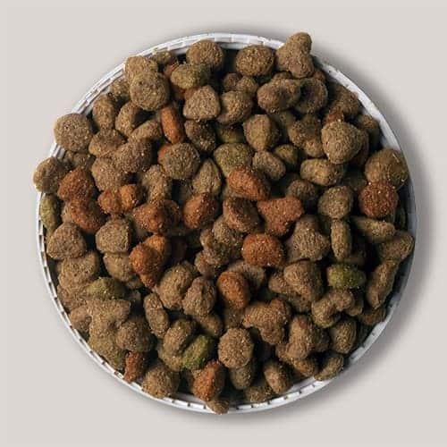 Bearts Cat Crunch Salmon & Veg